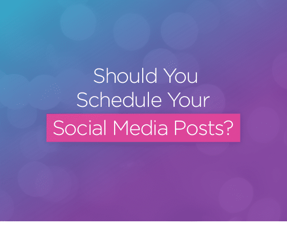 schedule social media sparkle society